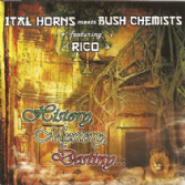 Ital Horns meets Bush Chemists ft. Rico - History, Mystery, Destiny (Roots Temple) CD